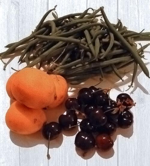 tavoloper2-frutta-spesa-al-mercato-con-personal-trainer