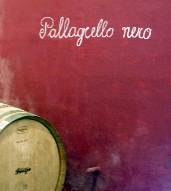 terre-del-principe-pallagrello-caserta-blog-di-cucina-valle-del-medio-volturno-castel-campagnano-enoturismo